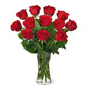 Basking Ridge Florist | Dz Red Roses